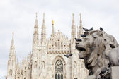 Lion of Vittorio Emanuele II monument in Milan — Stock Photo