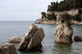 Rock on the sea, Miramare castle. Trieste — Stock Photo