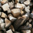 Wood logs piled — 图库照片 #7686041