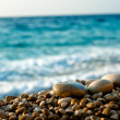 Gravel on the beach — Stock Photo