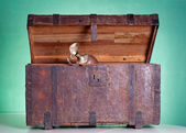 Antique wooden trunk — Foto Stock