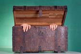 Tronco de madeira antigo — Foto Stock