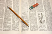 Pencil on dictionary — Stock Photo