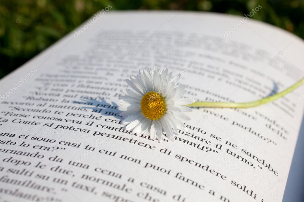 write analytical essay poem