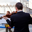 Concert Violinists — Stock Photo