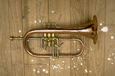 Trumpet pistons — Stock Photo
