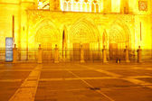 Leon Cathedral — Стоковое фото