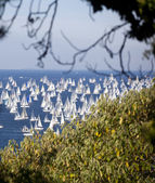 Barcolana 2010, The Trieste regatta — Stock Photo