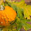 Decorative pumpkin — Stock Photo #6978348