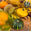 Stock Photo: Decorative pumpkin