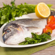 Stock Photo: Fresh gilthead