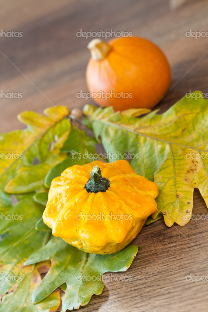 Cute autumn decorative pumpkins background — Stock Photo #6993581