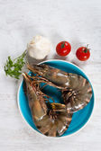 Raw Prawns — Stock Photo