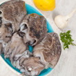 Raw Cuttlefish - Stock Photo