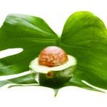 Half of an avocado — Stock Photo #6880830