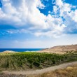 Vineyards in Crimea - Stock Photo
