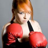 Boxer on training — Stock Photo