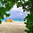 Tropical beach — Stock Photo #6969113