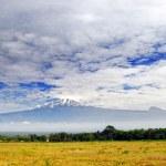 Kilimanjaro — Stock Photo #7948036