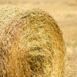 Haystack — Stock Photo #7138158