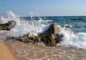 ロッキー海岸 — ストック写真