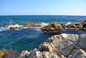 скалистое побережье — Стоковое фото