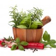 Royalty-Free Stock Photo: Fresh flavoring herbs and spices in wooden mortar