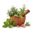 Fresh flavoring herbs and spices in wooden mortar — Stock Photo #7013182