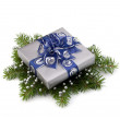 Silver gift box — Stock Photo #7013931
