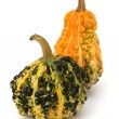 Decorative pumpkin - Foto Stock