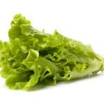 Lettuce salad isolated on white background — Stock Photo
