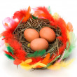 Easter egg in nest isolated on white background — Stock Photo