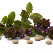 Herbal medicine — Stock Photo #7017504