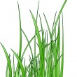 Raster. stylized grass silhouette - Stock Photo