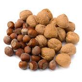 Nuts isolated on white background — Stock Photo