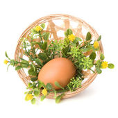 Easter egg decoration — Stock Photo