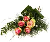 Beautiful roses isolated on white background — Stock Photo
