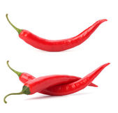 Chili pepper isolated on white background — Stock Photo