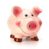 Lucky piggy bank isolated on white background — Stock Photo