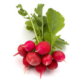 Small garden radish — Stock Photo