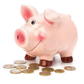 Business concept. Lucky piggy bank isolated on white background. — Stock Photo