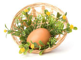Easter decor isolated on white background — ストック写真