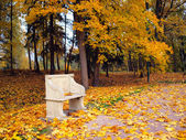 Ancient bench in autumn park — Stock Photo