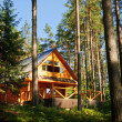 Stock Photo: Log House in forest