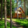 House in forest — Stock Photo