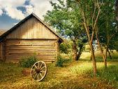 Country yard — Stock Photo