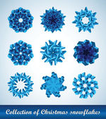 Collection of vector snowflakes — Stock Vector