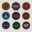 Collection of vintage round badges — Stock Vector
