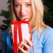 Beautiful woman with a Christmas gift — Stock Photo #7019341