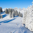 Winter in alps - Foto Stock